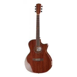 Is Harley Benton EAX-500 Mahogany a good match for you?
