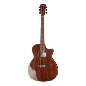 Is Harley Benton EAX-500TL Mahogany a good match for you?