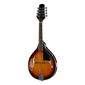Is Harley Benton HBMA-50 Mandoline VS a good match for you?
