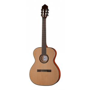 Is Harley Benton Santos Series C-40S NT B-Stock a good match for you?