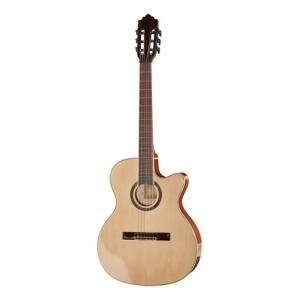 Is Harley Benton Santos Series C-40SCE B-Stock a good match for you?