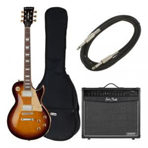 Is Harley Benton SC-450Plus VB Vintage S Bundle a good match for you?