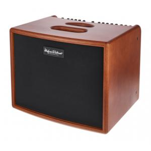 Is Hughes&Kettner ERA 1 Wood a good match for you?