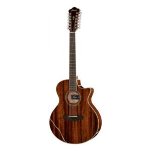 Is Ibanez AE2412-NT a good match for you?