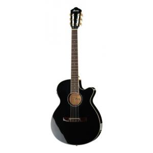 Is Ibanez AEG10NII-BK B-Stock a good match for you?