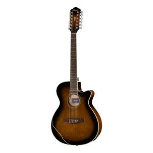 Is Ibanez AEG1812II-DVS a good match for you?
