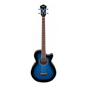 Is Ibanez AEGB20E-TSB a good match for you?