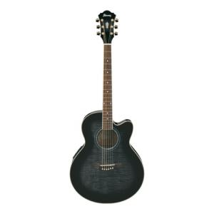 Is Ibanez AEL20E-TKS a good match for you?