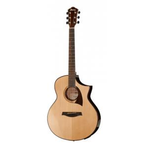 Is Ibanez AEW22CD-NT a good match for you?