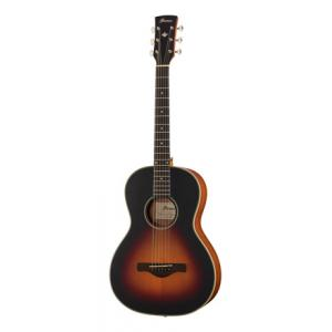 Is Ibanez AN60-BSM Artwood a good match for you?