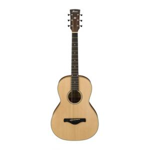 Is Ibanez AN60-LG a good match for you?
