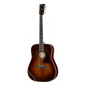Is Ibanez AVD10E-BVS Artwood Vintage a good match for you?