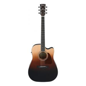 Is Ibanez AW80CE-BLG a good match for you?