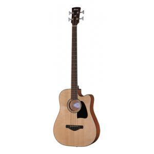 Is Ibanez AWB50CE-LG a good match for you?