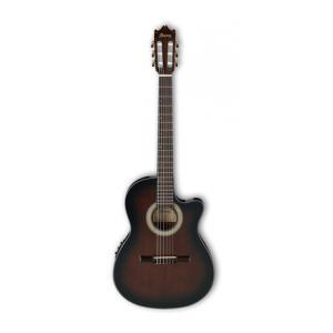 Is Ibanez GA35TCE-DVS a good match for you?