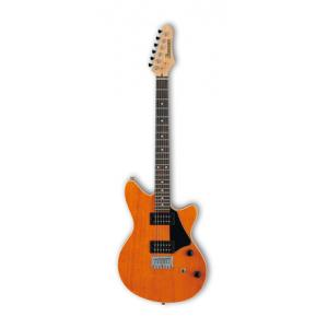 Is Ibanez RC220-AAM a good match for you?