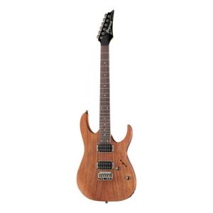 Is Ibanez RG421-MOL a good match for you?