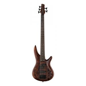 Is Ibanez SR655-ABS a good match for you?