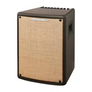 """Take the """"IS IT GOOD FOR ME"""" test for """"Ibanez T80II Acoustic Combo"""", read the reviews and join the community!"""