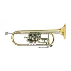 Is Johannes Scherzer 8217W-L C-Trumpet a good match for you?
