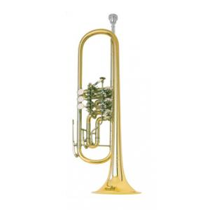 Is Johannes Scherzer 8218 Bb-Trumpet a good match for you?