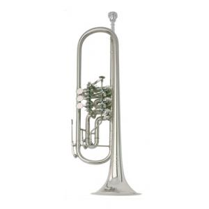 Is Johannes Scherzer 8218-S Bb-Trumpet a good match for you?