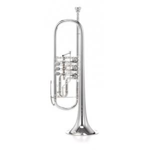 Is Johannes Scherzer 8218W-S Bb-Trumpet a good match for you?