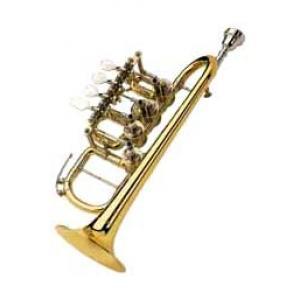 Is Johannes Scherzer High Bb/A-Trumpet 8111 a good match for you?