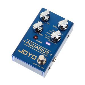 Is Joyo R-07 Aquarius Delay+Looper a good match for you?