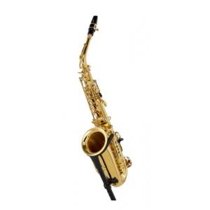Is Jupiter JAS700Q-SCS Alto Sax a good match for you?