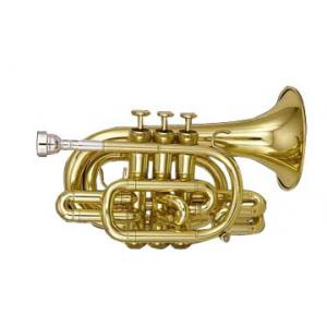Is Kanstul CCT 905 Bb- Pocket Trumpet a good match for you?