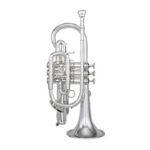 "Take the ""IS IT GOOD FOR ME"" test for ""Kanstul KCR 731 Bb-Cornet"", read the reviews and join the community!"