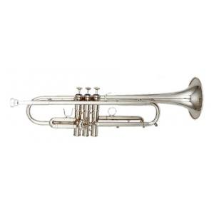 Is Kanstul KTR 700 S Bb-Trumpet a good match for you?