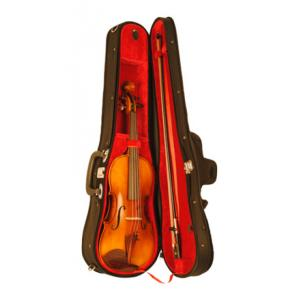 Is Karl Höfner Allegro 4/4 Violin Outfit a good match for you?