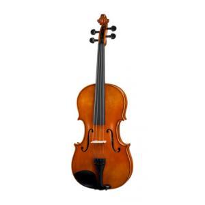 Is Karl Höfner Concertino Viola Set 16,5' a good match for you?