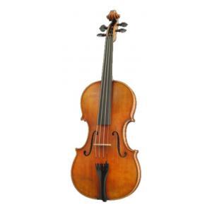 Is Karl Höfner H115-GG-V 4/4 Violin a good match for you?