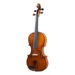 Is Karl Höfner H215-GG-V 4/4 Violin a good match for you?