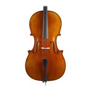 Is Karl Höfner H4/5 BG Cello 4/4 a good match for you?