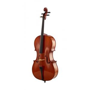 Is Karl Höfner H5-C-O Cello Set 4/4 a good match for you?