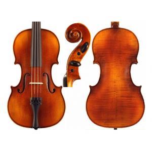 Is Karl Höfner H66-HV Violin 4/4 a good match for you?