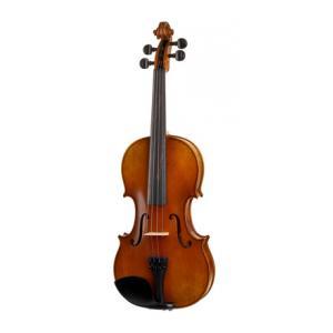 Is Karl Höfner H8-V Violin 4/4 a good match for you?