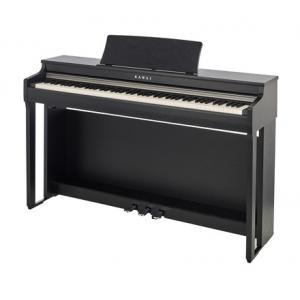 Is Kawai CN-27 SB a good match for you?