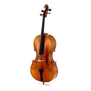 Is Klaus Heffler Cello Stradivari Davidov 4/4 a good match for you?