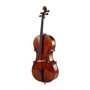 Is Klaus Heffler No. 220 SE Orchestra Cello a good match for you?