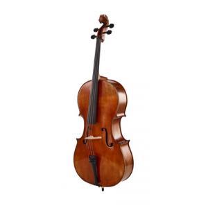 Is Klaus Heffler No. 310 SE Concert Cello Strad a good match for you?
