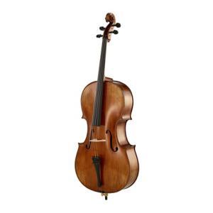 Is Klaus Heffler No. 320 SE Concert Cello Gua. a good match for you?