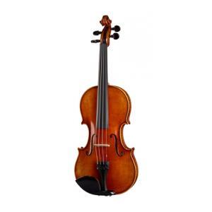 Is Klaus Heffler No. 6/0 SE Orch. Violin 4/4 a good match for you?