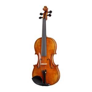 Is Klaus Heffler No. 7/5 SE Master Violin 4/4 a good match for you?