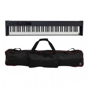 Is Korg D1 Bag Bundle a good match for you?