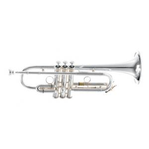 "Take the ""IS IT GOOD FOR ME"" test for ""Kühnl & Hoyer Classicum C-Trumpet"", read the reviews and join the community!"